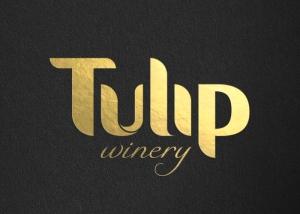 Black Tulip6